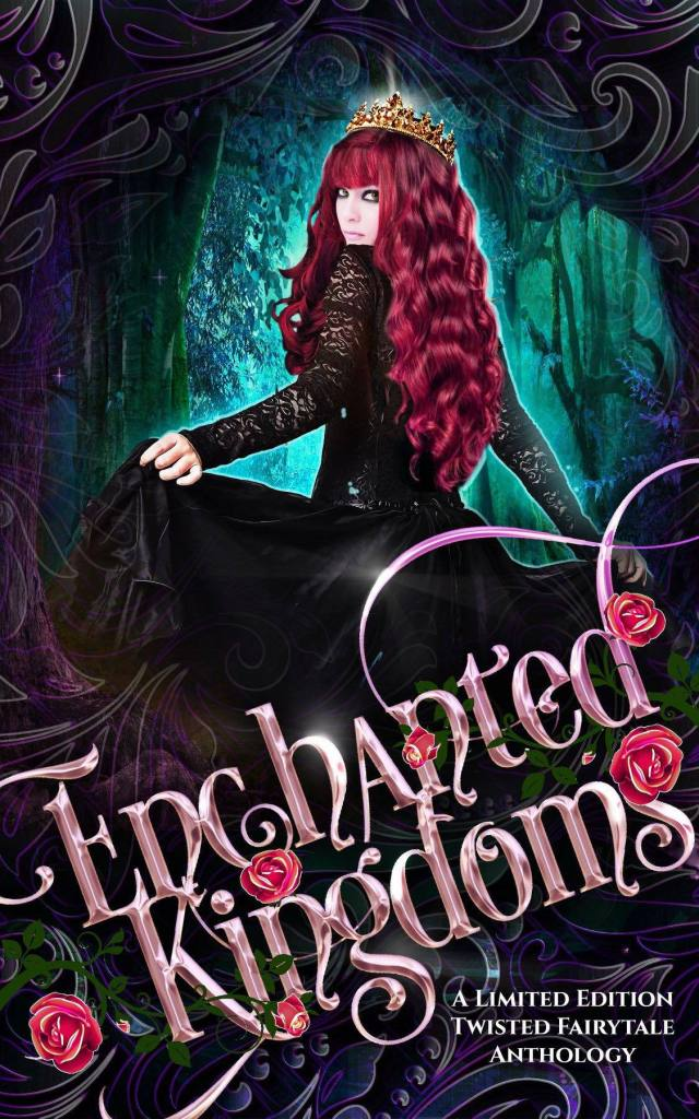 enchanted kingdoms a limited edition twisted fairytale anthology.